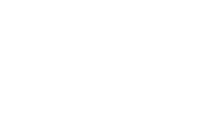 DW-RS